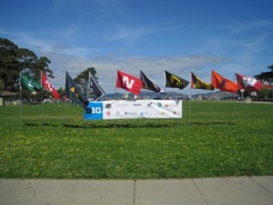 Big Ten Banner and Flags